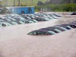 Picture of flooded cars